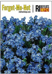 ForgetMeNot-Seed-Packet-Floral-Design-PROOF