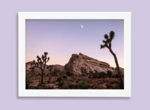 Desert Landscape photo print